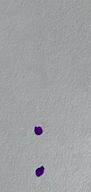 Capture d'écran 2020-07-08 à 18.48.35